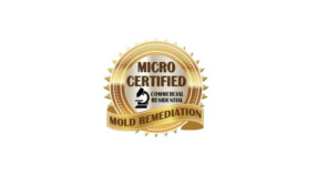micro-certified-mold-remediation